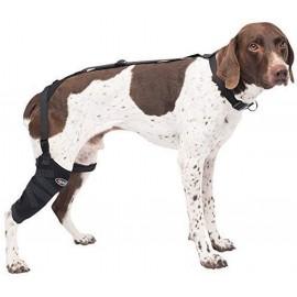 Caldera Pet Therapy Short...