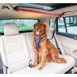 PetSafe Dog Zipline
