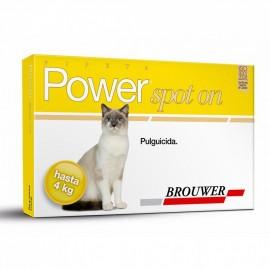 Power Spot On Gatos de...