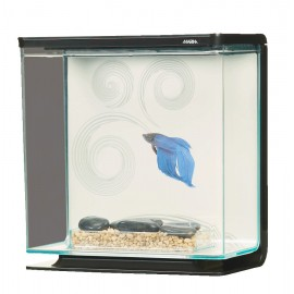Betta Kit 0,80 Gal.Zen (3...