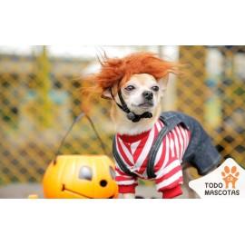 Disfraz Chuky para mascota