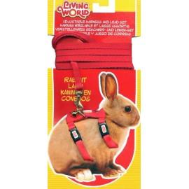 Arnes/Correa Rojo P/Conejo