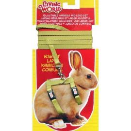 Arnes/Correa Verde P/Conejo
