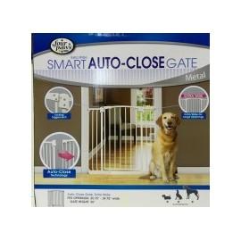 Puerta Metless Gate