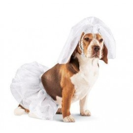 Disfraz vestido de novia