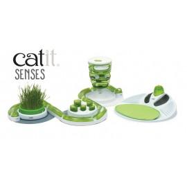 Circuito 5 piezas Cat It