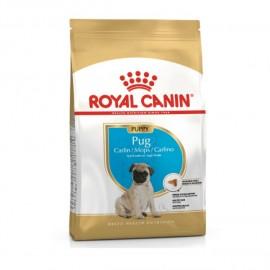 Royal canin Pug Carlin...