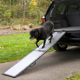 Rampa para perro