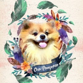 Retrato digital de tu Mascota
