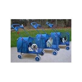 Coche Azul Stroller