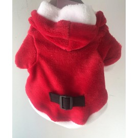 Traje Santa