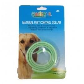 Collar pest control perro