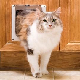 Puerta para gato petsafe